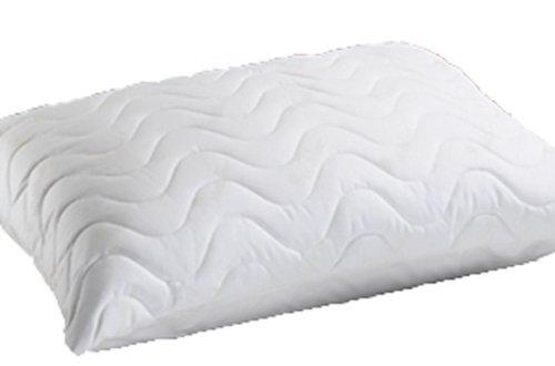 oreiller eau mediflow coussin a eau 50x70. Black Bedroom Furniture Sets. Home Design Ideas