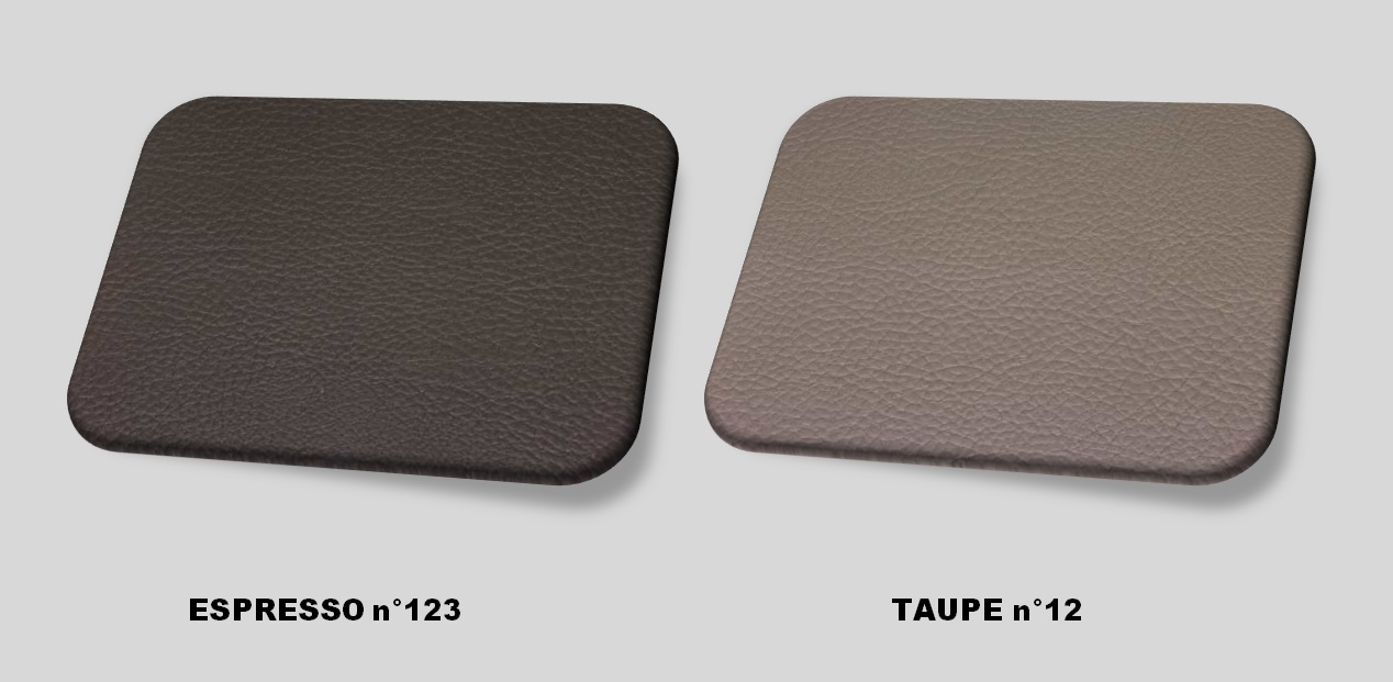 Couleurs cuir espresso - taupe